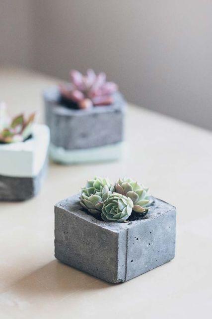 mini vaso quadrado