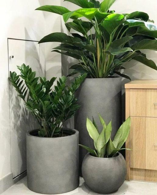 decoração com vasos grandes