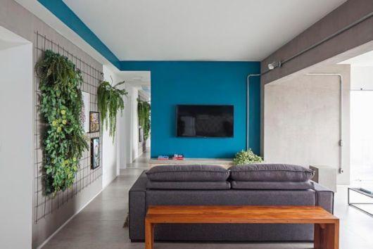 decoração moderna parede colorida