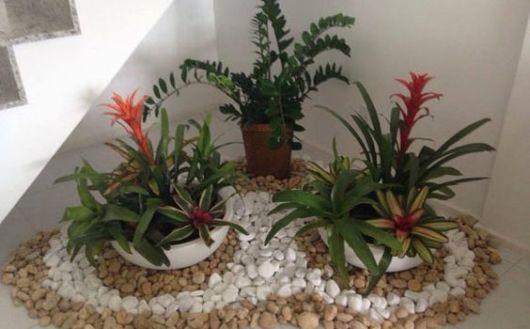 jardim interno e simples