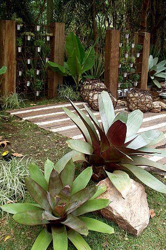 planta para jardim rústico
