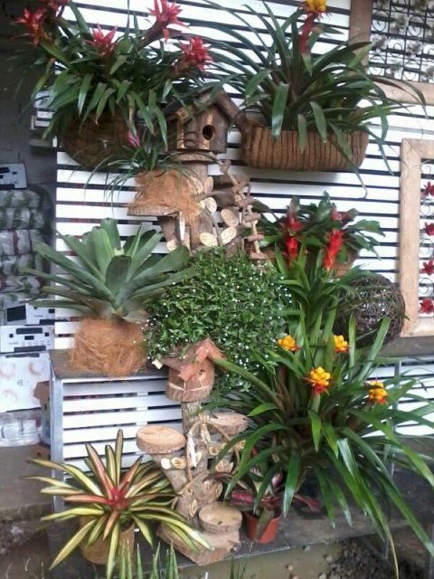 decoração jardim vertical