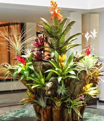 tronco com flores
