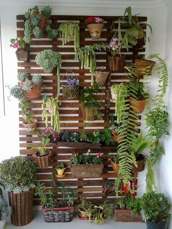 Parede de pallet decorada com plantas