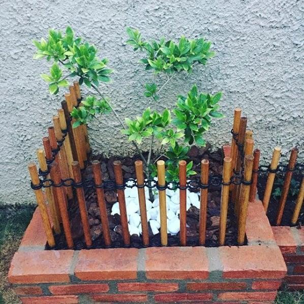 jardim pequeno com cercado de madeira