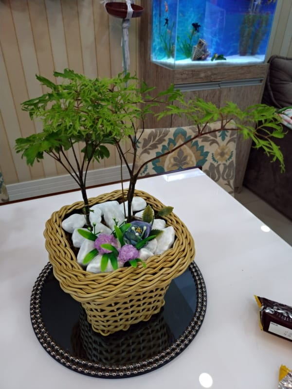 planta decorando mesa