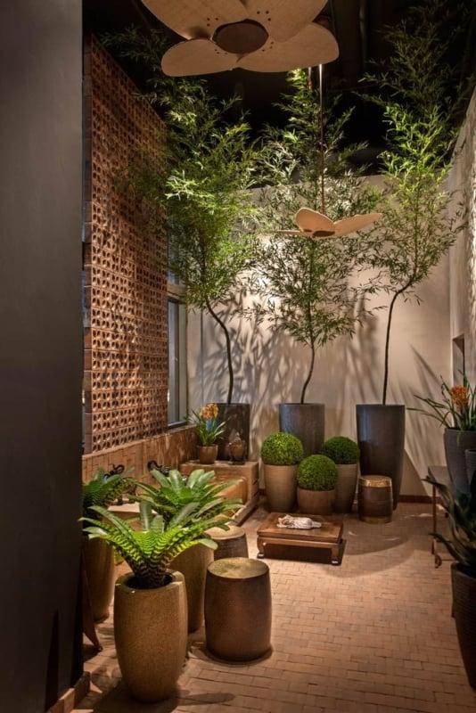 vasos com plantas decorando área externa