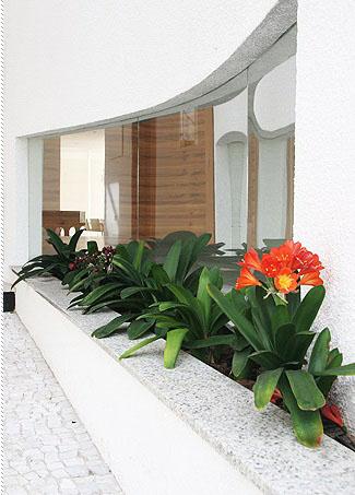 janela de vidro com flores