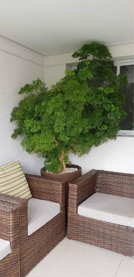 varanda decorada com planta