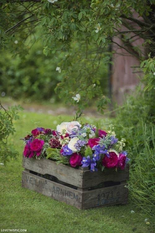 canteiro de flores de caixote de madeira