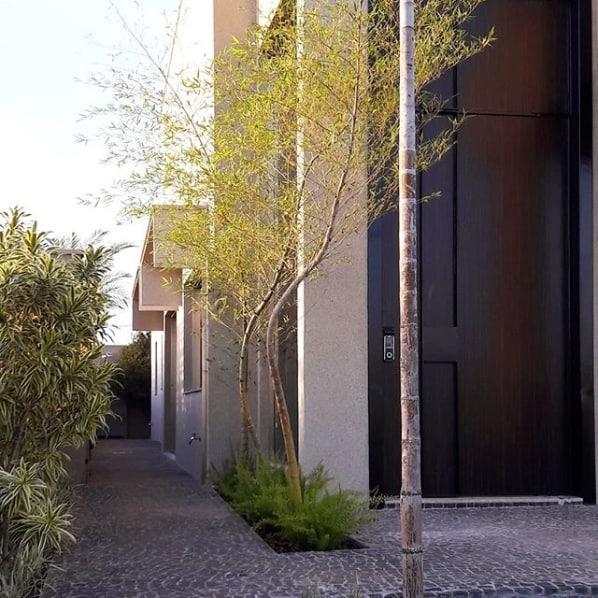 fachada moderna com jardim