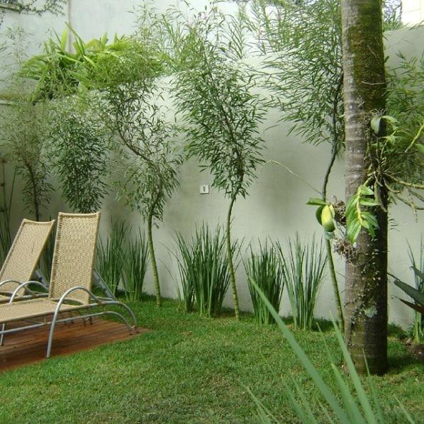 jardim gramado com bambus