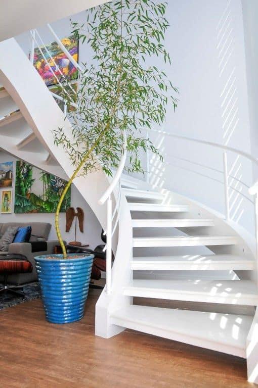 sala com escada e plantas naturais