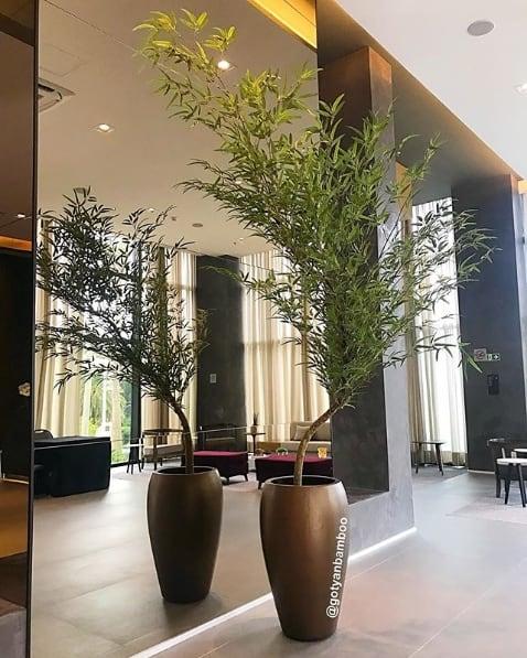 sala moderna com vaso de planta