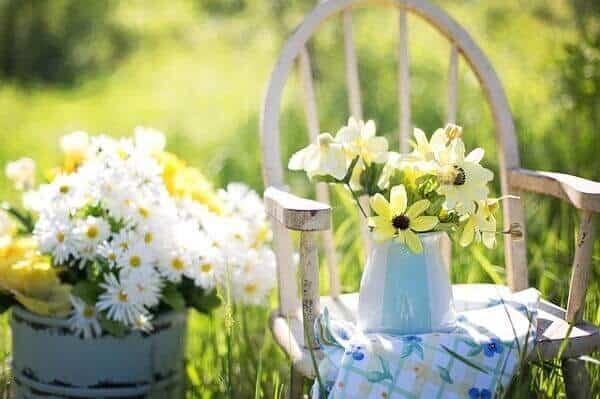 Jardim com flores do campo
