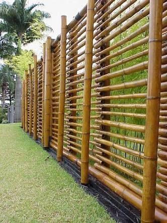 cerca de bambu gigante