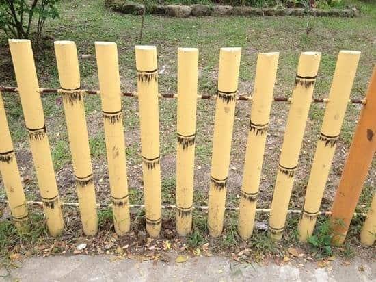cerca de bambu 10 1
