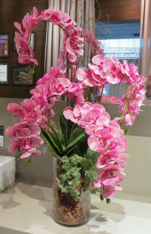 tipos de orquídeas rosas