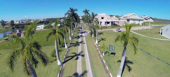 área com Palmeira imperial