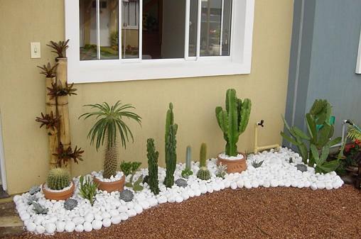 casa com jardim de cactos