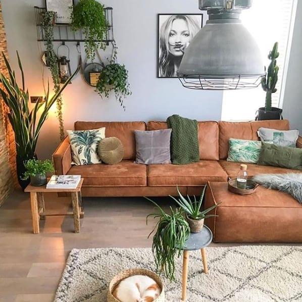 sala decorada com plantas