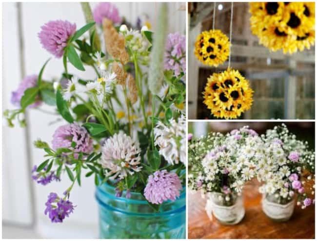 Flores do campo 3