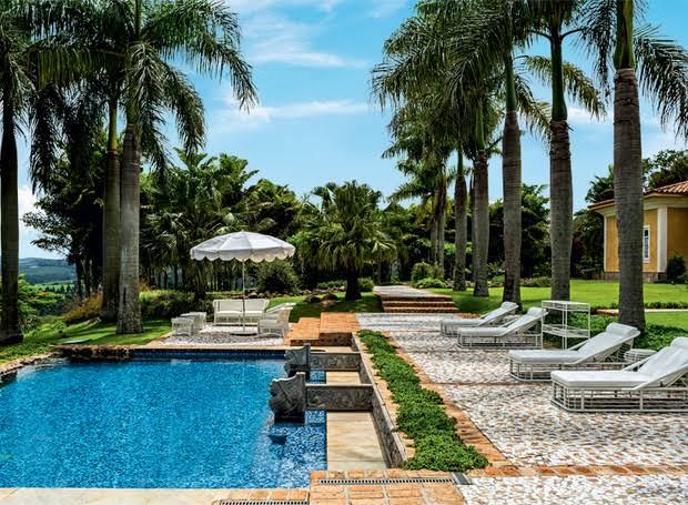 Palmeira imperial na beira da piscina
