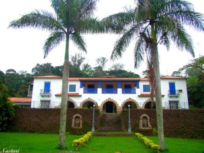 Palmeira imperial na entrada da fazenda