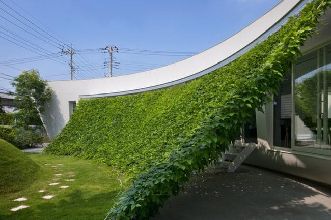 Projetos arquitetônicos sustentáveis green screen house
