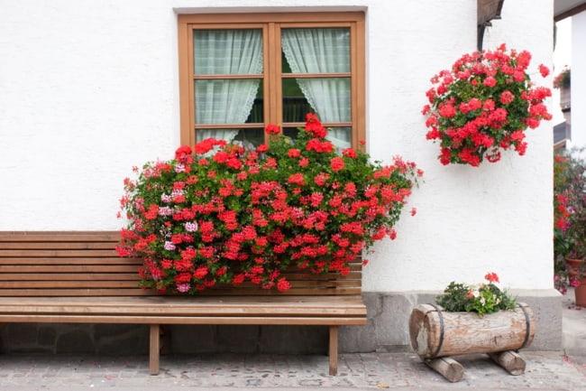 Tronco floreira na decoração externa