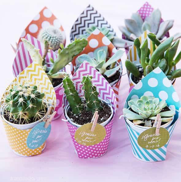 Vasinhos coloridos com mini cactos