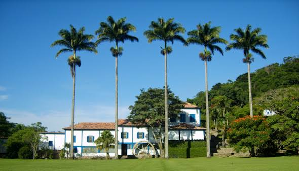 fachada linda com Palmeira imperial