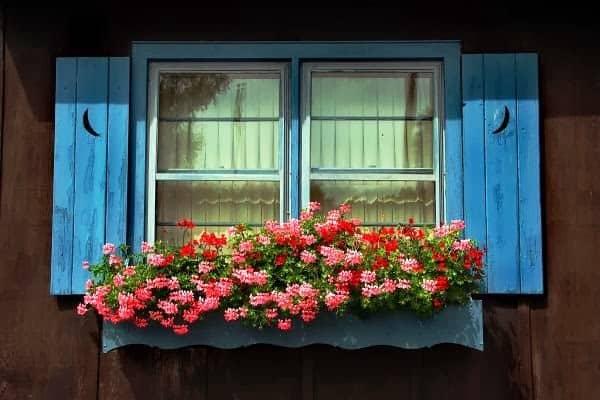 floreira de janela grande
