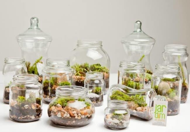 ideia de mini jardim em vidro