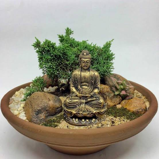 lindo mini jardim japonês