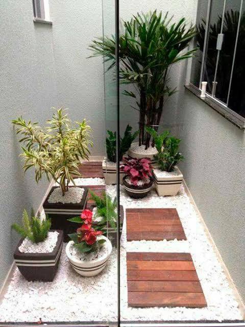 mini jardim de inverno na sala