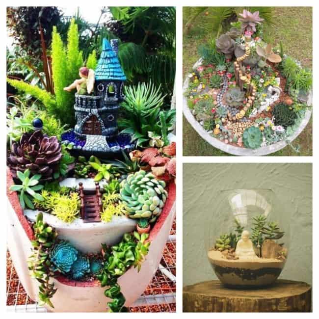 mini jardim decorado