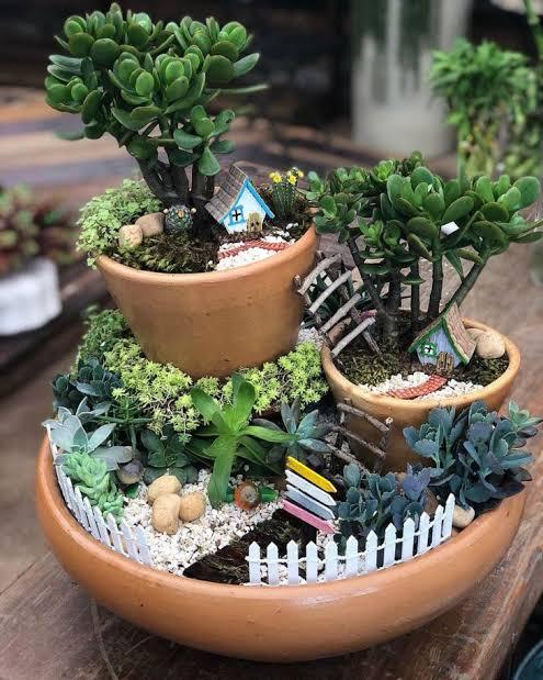 mini jardim em vaso ideias