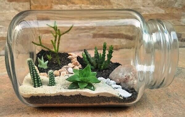 mini jardim em vidro