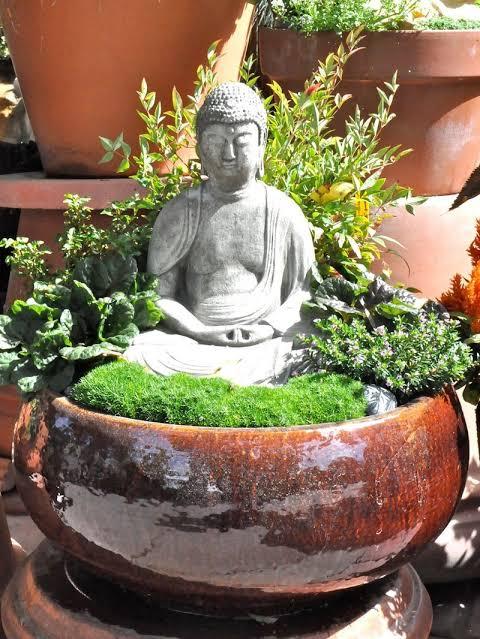 mini jardim zen