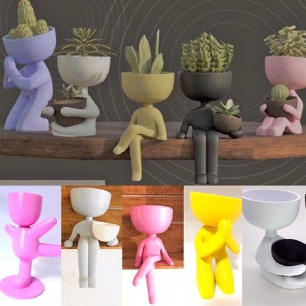 vasinhos divertidos para mini cactos e suculentas