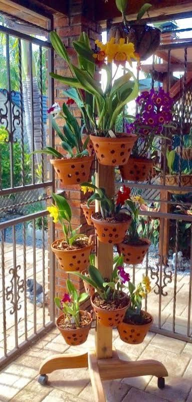mini orquidário vertical para espaços pequenos