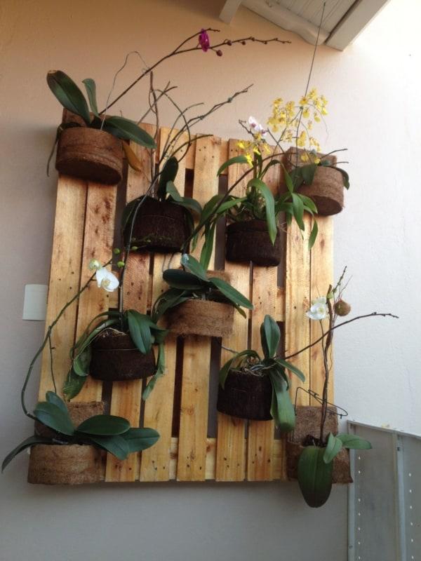 orquidário simples feito de pallet