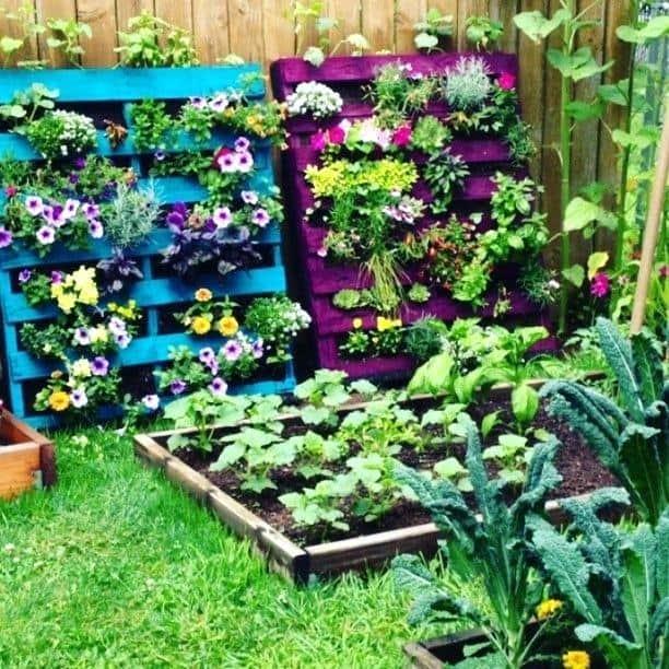 jardim com floreiras coloridas de paletes