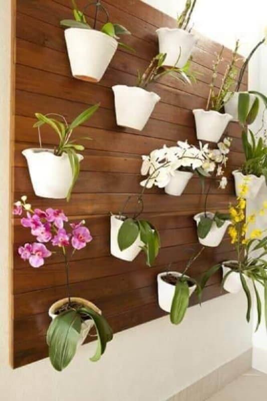 orquidário em painel de madeira
