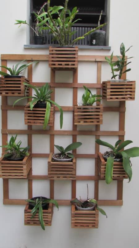 orquidário vertical de madeira