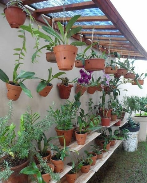 orquidário simples no jardim
