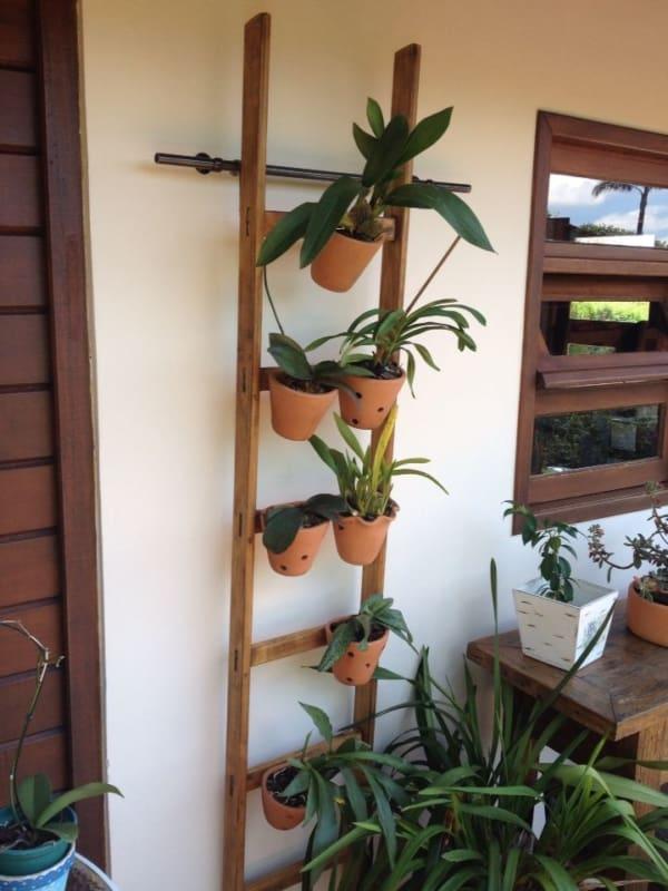 modelo de orquidário barato para fazer em casa