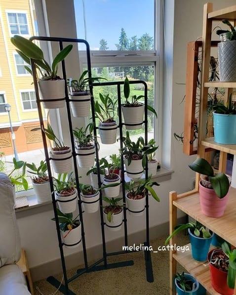 orquidário vertical para apartamento