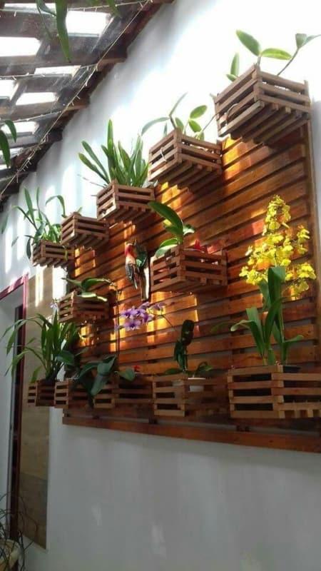orquidário de madeira na parede